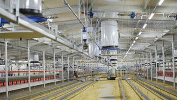 Special ventilation system.